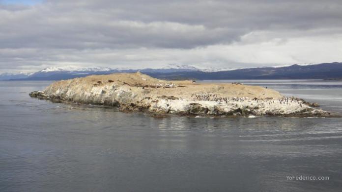 Isla de los Pajaros, con cormoranes y lobos marinos.