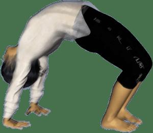 Cakrãsana, la posture de la roue ou le grand pont
