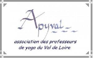 apyval-logo