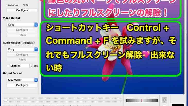 Macフルスクリーン解除裏ワザ💖ショートカットキー Control + Command + F でフリーズの時の解除方法💚はじめての簡単MacデビューのMacの使い方💖
