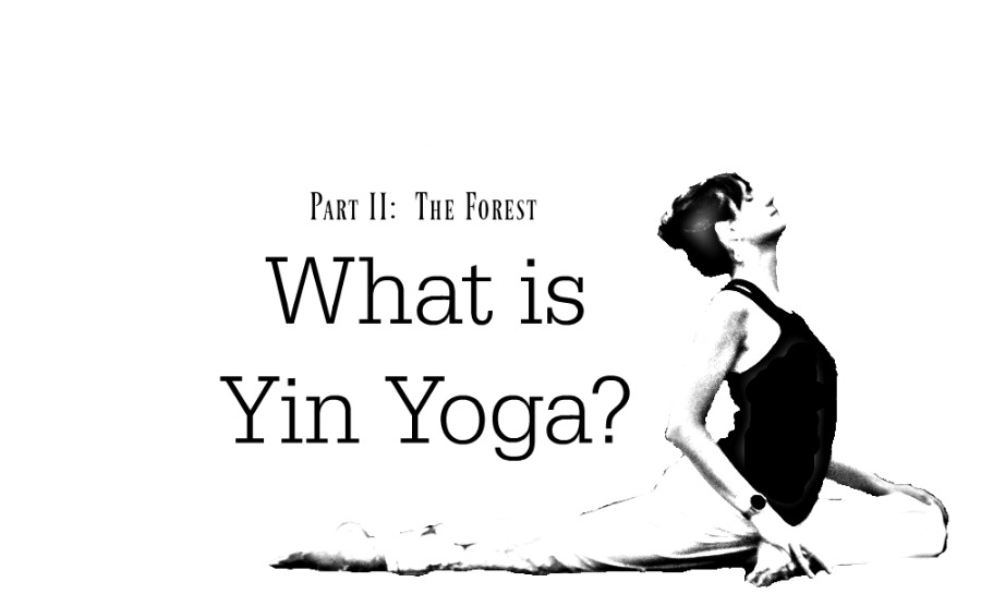 What is Yin Yoga: Part II
