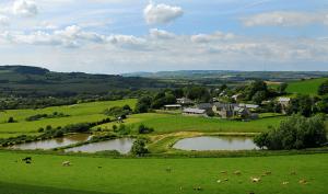Nettlecombe_Farm_Scene_1