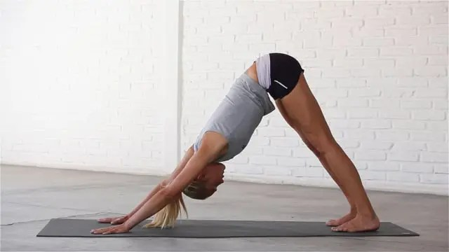 Downward Dog stretches the ankles, calves, hamstrings and spine.