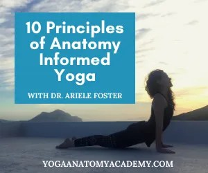 Silhouette of yoga pose with title text 10 Principles of Anatomy Informed Yoga