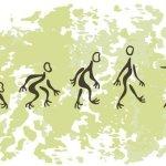 От новичка до кренделя: кривая обучения в йоге