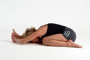 Yoga Book 2005
