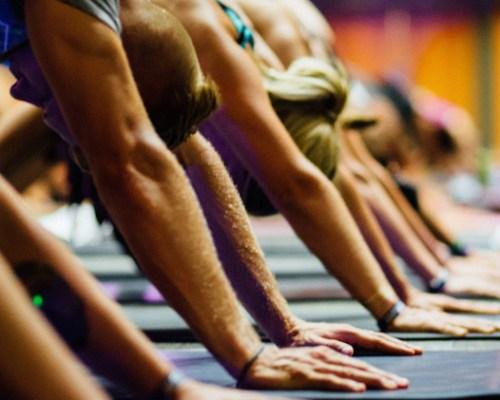 Yoga Classes Heidelberg (Neuenheim & Handschusheim) | Yoga Shala