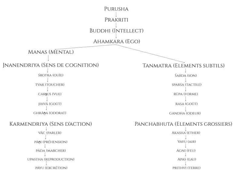 Evolution d'après Yoga. Les tattva de yoga d'après Samkhya