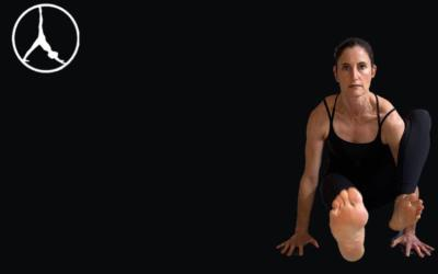 Outer hips, Bhujasana & Astavrakasana (Level 2-3)
