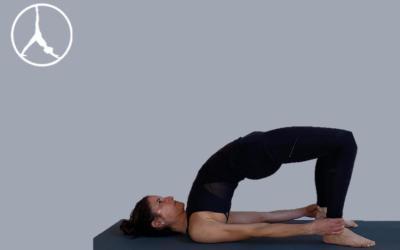 Dorsal spine and deep backbends (Level 2)