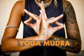 Yoga Mudra - Science Behind It