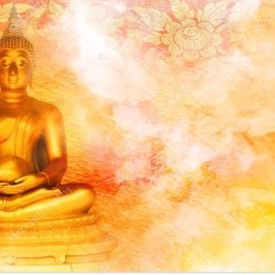 Formación Mindfulness