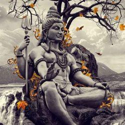 La Respiración: Pranayamas