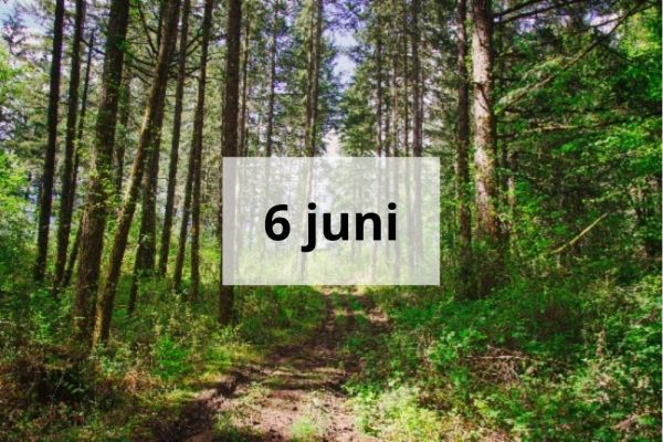 Dagretreat 6 juni