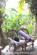 Yoga-mat-cat-Atitlan_5595