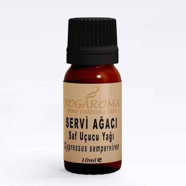 servi agaci saf ucucu yagi aromaterapi yagları