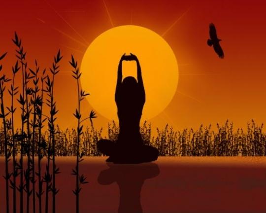 yoga-2_1330518740_1382089477_540x540