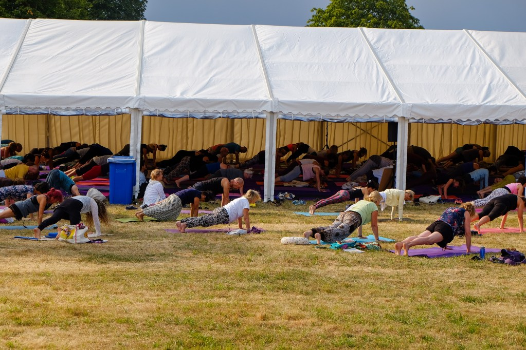 World yoga festival 9