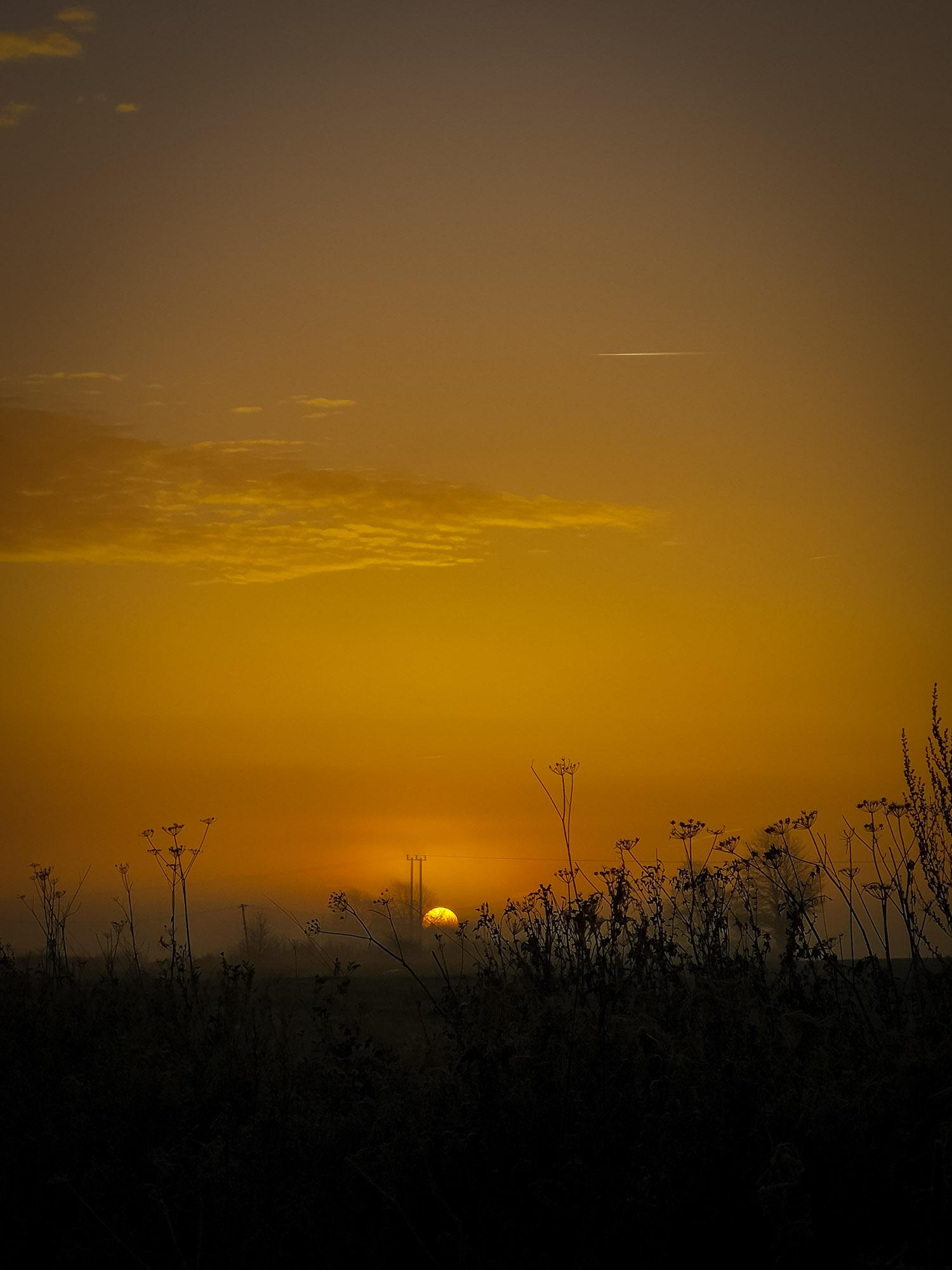 Sunrise walk yogavision