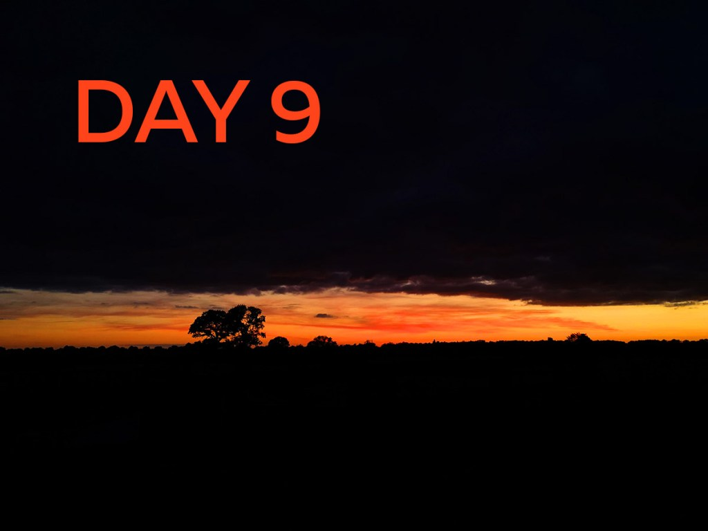 day 9