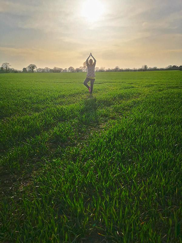 Yoga tree 2