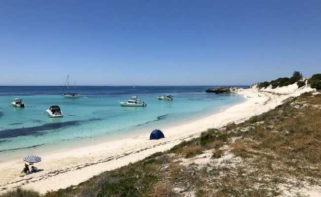 How To Plan A Perfect Day Trip To Rottnest Island In