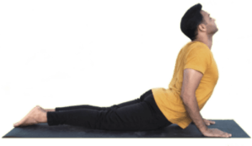 Bhujangasana - Yoga with Ankush