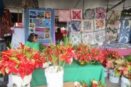 Colorful Stall, Hilo