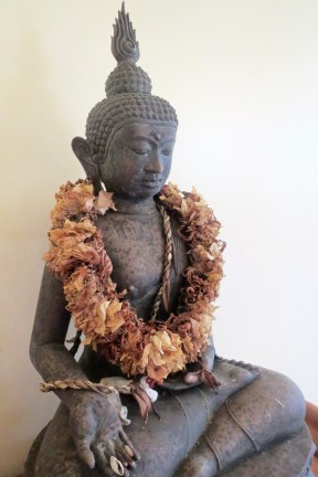 Quiet Buddha