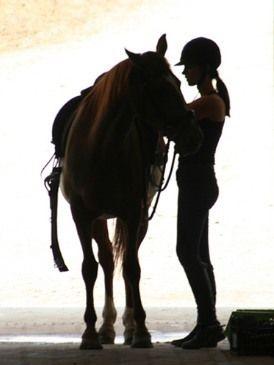 Йога и лошади: