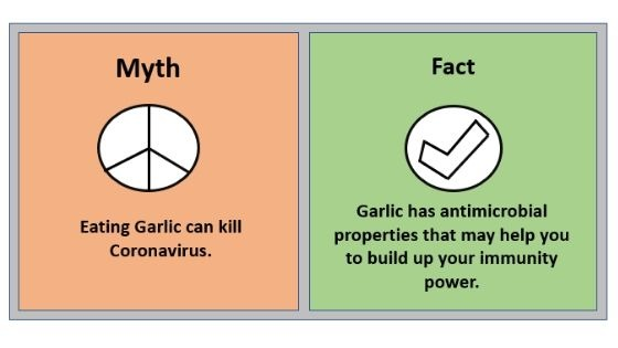 Myth 5 Eating Garlic can kill Coronavirus.