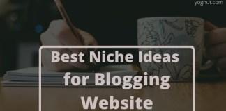 Best Niche Ideas for Blogging Website