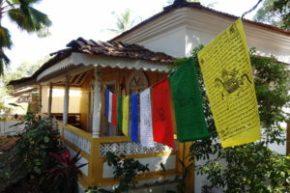 Yog Temple Garden Yoga India