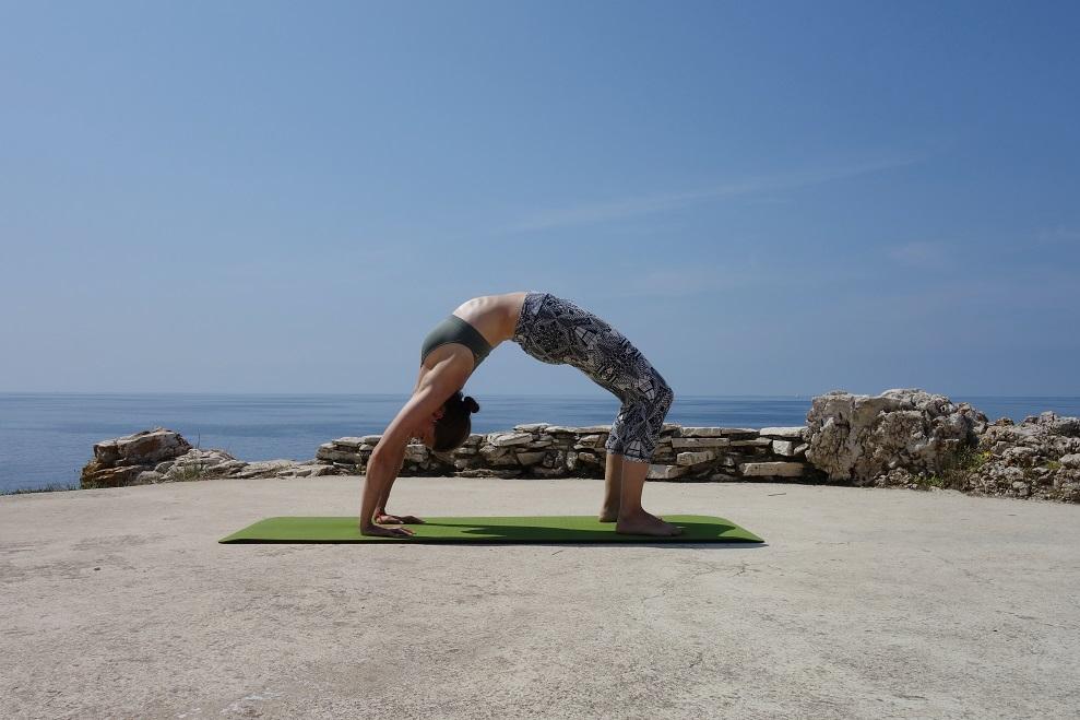 chakrasana yogtemple - Yoga Asana Glossary