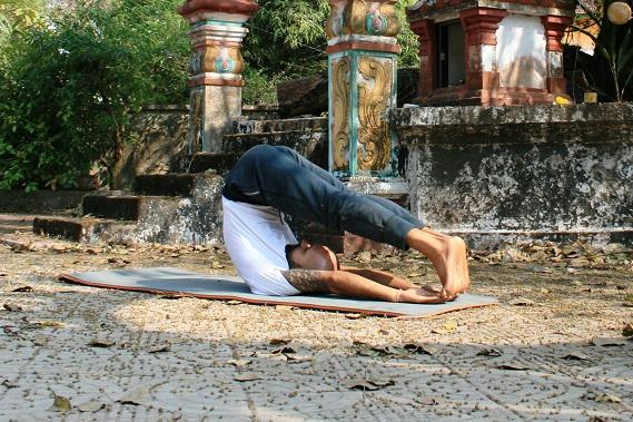 halasana yogtemple - Yoga Asana Glossary