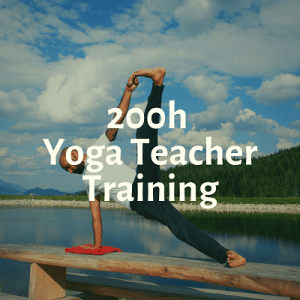 yogtemple yttc200 - New Month Resolution - November