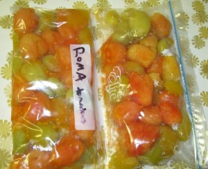 freeze roma tomatoes