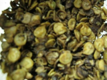 dried pepper seeds