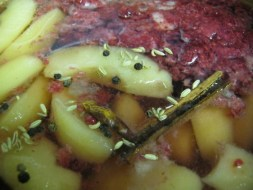 apple raspberry ferment