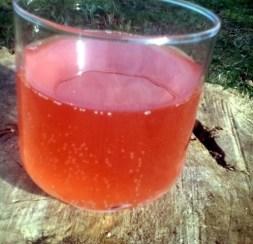 apple raspberry wine