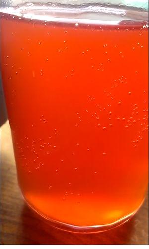 raspberry rooibos ginger bug soda