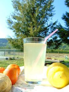 flavored water kefir