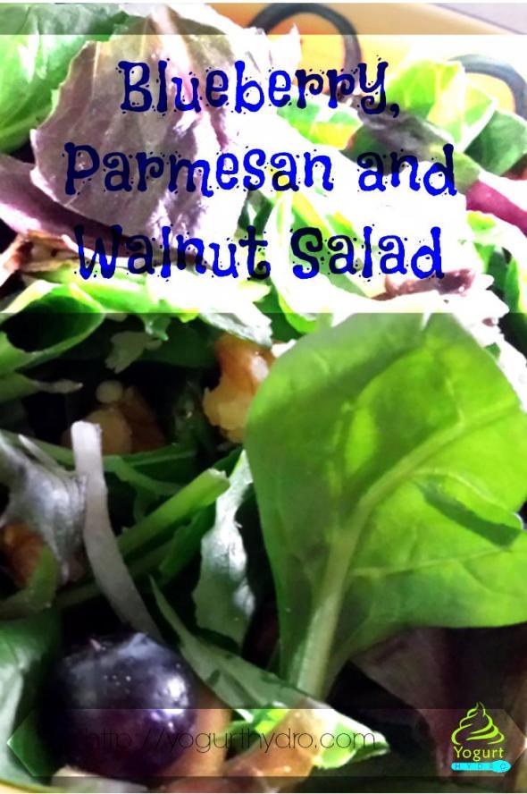 Blueberry, Parmesan & Walnut Salad