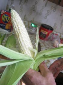 prepped corn