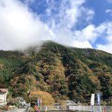 『雲取山①』東京都最高峰!そびえ立つ、霧の山へ!