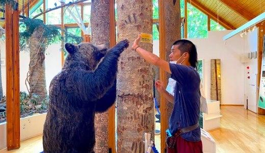 旭川へ来ています。熊と山と大自然の中で!