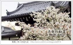 >▋日本關西旅遊▋大阪自由行/京都自由行/日本岡山旅遊