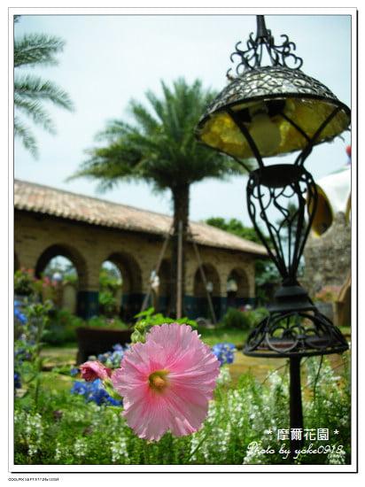 摩爾花園餐廳] Moors花園餐廳。雲林斗六摩爾花園餐廳