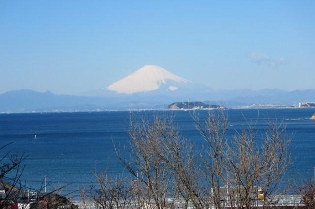 蘆花記念公園の富士山