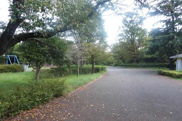 俣野公園敷地内